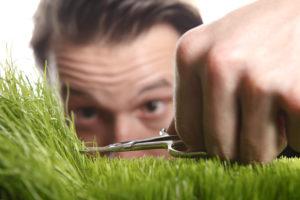 Akku Grasschere als Alternative zur Handarbeit